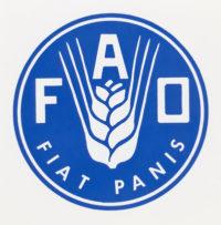JAK OBLICZYĆ PODSTAWOWĄ PRZEMIANĘ MATERII – WZÓR FAO